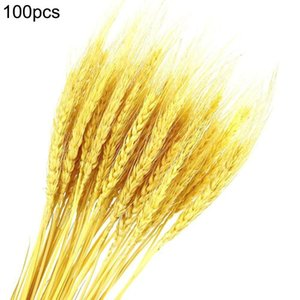 100Pcs lot Wheat Ear Flower Natural Dried Flowers for Wedding Party Decoration DIY Craft Scrapbook Home Decor Wheat Bouquet