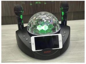 Changeur de voix sans fil microphone haut-parleur extérieur portable hibou téléphone mobile Bluetooth famille Karaoké KTV SDRD308