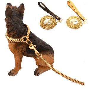 الفولاذ المقاوم للصدأ الحيوانات الأليفة الذهب سلسلة الكلب المقاود الجلود مقبض المحمولة المقود حبل الأشرطة جرو الكلب القط التدريب زلة طوق اللوازم 1