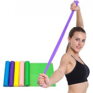 Yoga Pilates Stretch Resistance Bands High Elastic Fitness Crossfit Exercise Equipment TPE Pulling Belts Resistance Bands CCA11486 120pcs