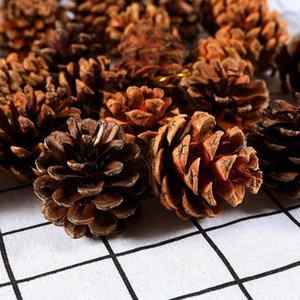 24 Pieces Pine Cones Ornament Natural PineCones With String Pendant Crafts for Gift Tag Tree Party Hanging Decoration