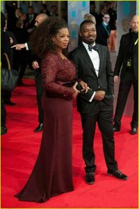 2019 New Oprah Winfrey Burgundy Long Sleeves Sexy Mother of the Bride Dresses V-Neck Sheer Lace Sheath Plus Size Celebrity Red Carpet Gowns