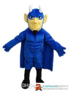 100% réelle mascotte Super-héros adulte photos Costume d'équipe Custom Mascottes Sport mascotte Costume Desuisement Mascotte Personnage Design Company
