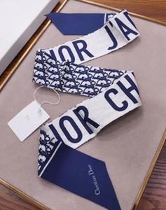 ترف الحرير الجديد مصمم حقائب اليد وشاح طويل شال للنساء عالية الجودة والأوشحة الحريرية وشاح صغيرة لحقيبة رئيس وشاح