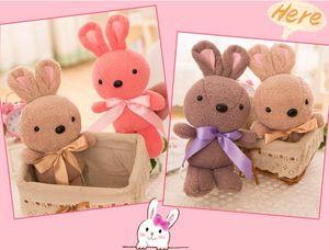 New Sugar Rabbit Lover Rabbit Boy Girl Gift Creative Furry Grab Machine Boy Wholesale