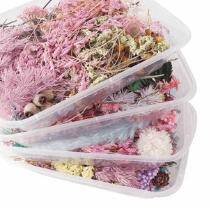 1 Box Real Dried Flower Dry Plants For Aromatherapy Candle Epoxy Resin Pendant Necklace Jewelry Making Craft DIY Accessories home Decoration