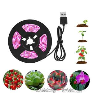 LED Işık Tam Spektrum USB Bitkiler Çiçekler Sera Hidroponik büyüme çadır Hızlı Gemi için Işık Şerit 2835 Chip LED Phyto Lamp Grow