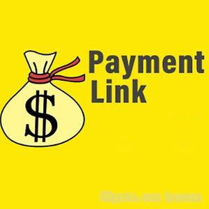 Link di pagamento per altre borse non elenco sul sito Web Moda Articoli personalizzati di lusso e spese di spedizione