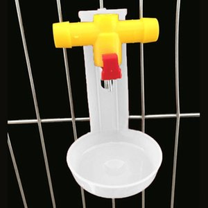 Poulet Gobelets eau Volaille Quail Coop automatique Titiller alimentation Outil Autre produits pour les oiseaux