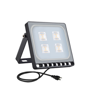 Household living room bedroom decoration 10W 6th Generation Flood Light Ultra-thin Warm White American Standard with Plug 110V