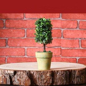 Ретро моделирования цветок бонсай домашних дикие творческие украшения различных стили мини поддельные комнатные настольные украшения EEA409