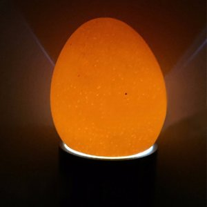 1 Adet İnkübatör Ovoskopi Yumurta Mum Lambası 9 LED Süper Soğuk Kuluçka Makineleri Tavuk Aracı