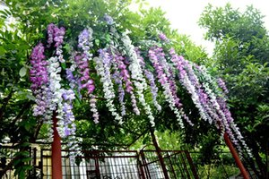 Wholesale Upscale Artificial Silk Flower Vine Home Decor Simulation Wisteria Garland Craft Ornament For Wedding Party Decorations