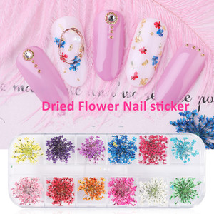 3D Dried Flower Nail sticker Natural Floral Nail Art Decals Mixed Dry Flower Leaf DIY Nail Decoration Jewelry UV Gel Polish Manicure