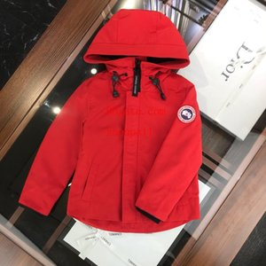 windbreaker European style kids brand clothes boys fashion zipper jacket kids coats high quality sweatshirt hoodie baby girl clothes TZ-24 on Sale