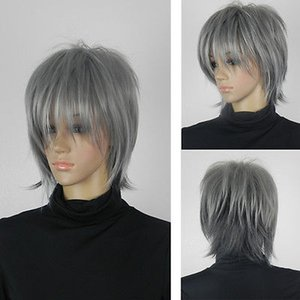 Wholesale H5982Q gt gt gt women men unisex short fluffy hair wig grey full synthetic cosplay party wig new