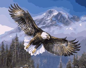 Wholesale 16x20 inches DIY Paint on Canvas by Number Kits Abstract Art Acrylic Oil Painting for Adults Eagle Flying over Snowy Mountains Frame