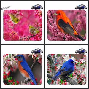 Wholesale Mairuige Colorful Pajaros Custom Antislip High Definition Printing Gaming Rubber Mouse Pad Cheap Computer Desk