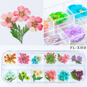 Mixed Natural Nail Dried Flower DIY 3D Pressed Blossom Flower Leaf Slider Sticker Polish Manicure Nail Art Decoration New Arrive