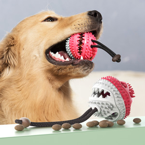 Dog Molar Toy Toothbrush Pet Chew Toy Pet Dog Food Dispensing Teeth Cleaning Chew Toy Puppy Bite Toys Pets Training Ball