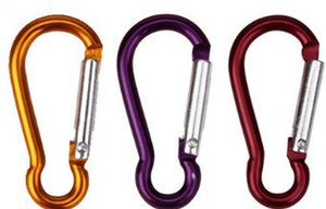 Wholesale 10pcs Carabiner Aluminum Alloy D Ring Key Chain Carabiners Hook Spring Snap Clip Hooks Keychain climbing equipment