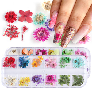 Wholesale Mix Dried Flowers Nail Decorations Jewelry Natural Floral Leaf Stickers D Nail Art Decals Polish Manicure Accessories