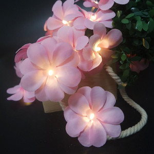 Wholesale plumeria flowers for sale - Group buy Fashion floral Plumeria led light garland for wedding decoration flower string light decorative Kids living room fairy led