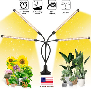 Wholesale timer light switch for sale - Group buy Led Grow Light for Indoor Plants W Led Switch Modes Dimmable Levels Timing Timer Adjustable Plant Light with Full Spectrum
