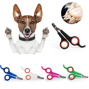 Wholesale pet birds for sale - Group buy Pet Nail Clippers Dog Cats Bird Toe Claw Stainless Steel Grooming Scissors Dog Nail Trimmer Cut Nail Pet Accessories w