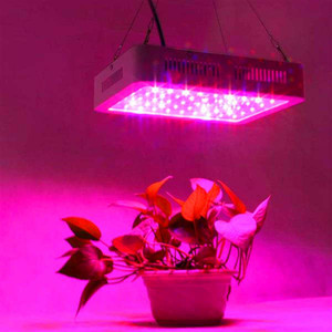 Wholesale high quality grow lights resale online - Hot selling W Dual Chips nm Full Light Spectrum LED Plant Growth Lamp White high quality Grow Lights