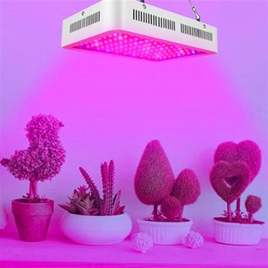 Wholesale high quality led grow lights for sale - Group buy Hot sale W Dual Chips nm Full Light Spectrum LED Plant Growth Lamp White high quality Grow Lights