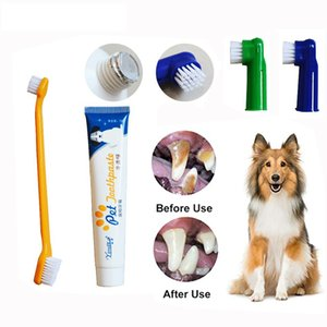 Wholesale best toothpastes resale online - Dog Healthy Edible Toothpaste Small Dog Cats Mouth And Teeth Cleaning And Care Supplies Taste Best Pet Dental Care Toothpaste