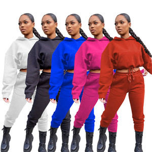 Women Tracksuit Solid Color Full Sleeves Jacket Hooded Elastic Hoodie Pants Leggings Autumn Winter Two Pieces Sports Suit S-XXL CZ121103