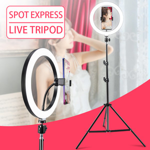 halo leuchten großhandel-Amazon inch inch Halo Tisch USB Beauty Video Studio Foto Kreis Lampe Dimmbar Selfie LED Ring Fotografie Beleuchtung inch Schönheit