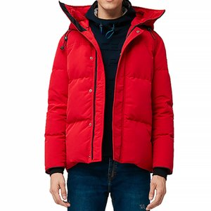 Wholesale winter cloths resale online - winter men down jacket parka Waterproof cloth No Wolf fur collar medium to thick style size xs xxl four colour