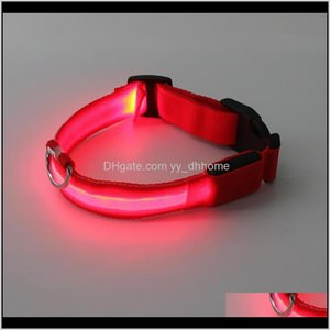 Wholesale accident cars for sale - Group buy Leashes Usb Charging Flashing Collar Antilost Avoid Car Accident Dog Led Pet Collars Neck Ring Luminous Erhvc Vqsto