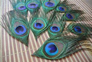 Wholesale Trimmed peacock feather peacock eye feather for weddings jewelry craft scrapbook costumes hairpiece