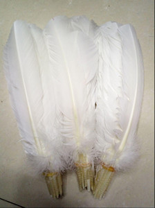 Turkey Feathers White Turkey Round Quill Feathers 10-12inches 25-30cm