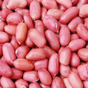 50 seeds   pack, Chinese 4 pcs Peanut Seeds in one Shell , Red Skin Organic Rare Heirloom Peanut, germination rate 95%