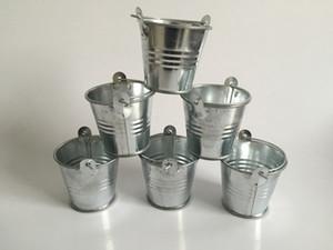Metal Pails Mini Garden Silver Cute Succulents planter Tin Planter Mini Galvanized Buckets for small plant