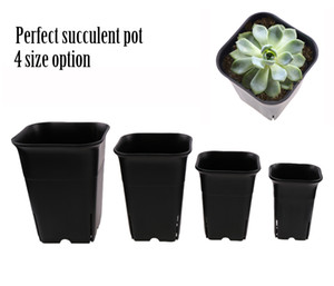 4 size option square nursery plastic flower pot for indoor home desk, bedside or floor, and outdoor yard,lawn or garden planting