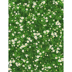 Wholesale green screens resale online - Spring Photography Backdrops Vinyl Vine Lawn Daisy Flowers Green Screen Scenic Photographic Backgrounds Newborn Baby Shower Photobooth Prop