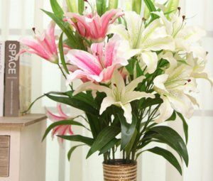 Wholesale artificial lily flower is decorated with plastic leaves in the living room