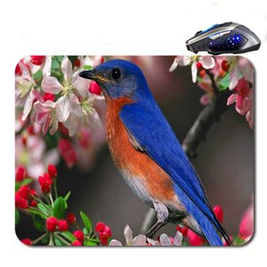 Wholesale Colorful Pajaros Top Sell Custom Antislip High Definition Printing Gaming Rubber Mouse Pad Cheap Computer Desk