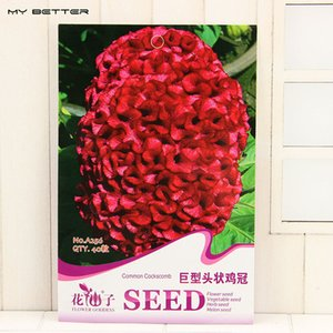 Wholesale Original Pack Bag Giant Heads Cockscomb Seeds Balcony Potted Bonsai Plant Flower Seeds for Home Garden