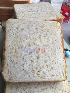 Wholesale New Arrival Grantpet high quality foam cover Bread toast pet cushion GP40