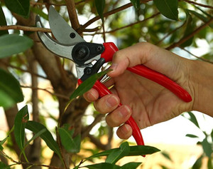 Wholesale stainless steel garden flowers resale online - by dhl or ems practical and Ergonomic Flower Cutter Grafting Tool Scissors Pruning Shears Garden Trimmer Cutter