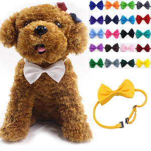 ingrosso legami di arco legato-Animale domestico regolabile Bow Tie Neck Accessory Collana Collare Cucciolo Bright Color Pet Bow Brow Color HH7