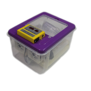 16 Eggs Small Incubator Full-automatic Household Hatcher Dual Power Egg Incubator for Quail Chicken Duck Pigeon Parrot, Purple