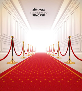 Wholesale 5x7ft Vinyl Digital Plush Indoor Red Carpet Backdrop Photography Studio Background